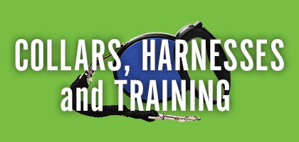 Collars, Harnesses and Training
