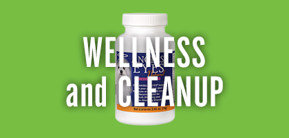 Wellness and Cleanup